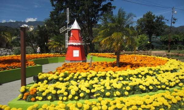 Chiriqui Highlands Flower and Coffee Festival